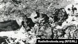 Місце першого розкопу у Сандармоху. Це те, що побачили представники Петербурзького «Меморіалу» і Юрій Дмитрієв 1 липня 1997 року