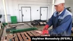 Разделка рыбы на перерабатывающем заводе. Кызылординская область, 22 июля 2018 года.