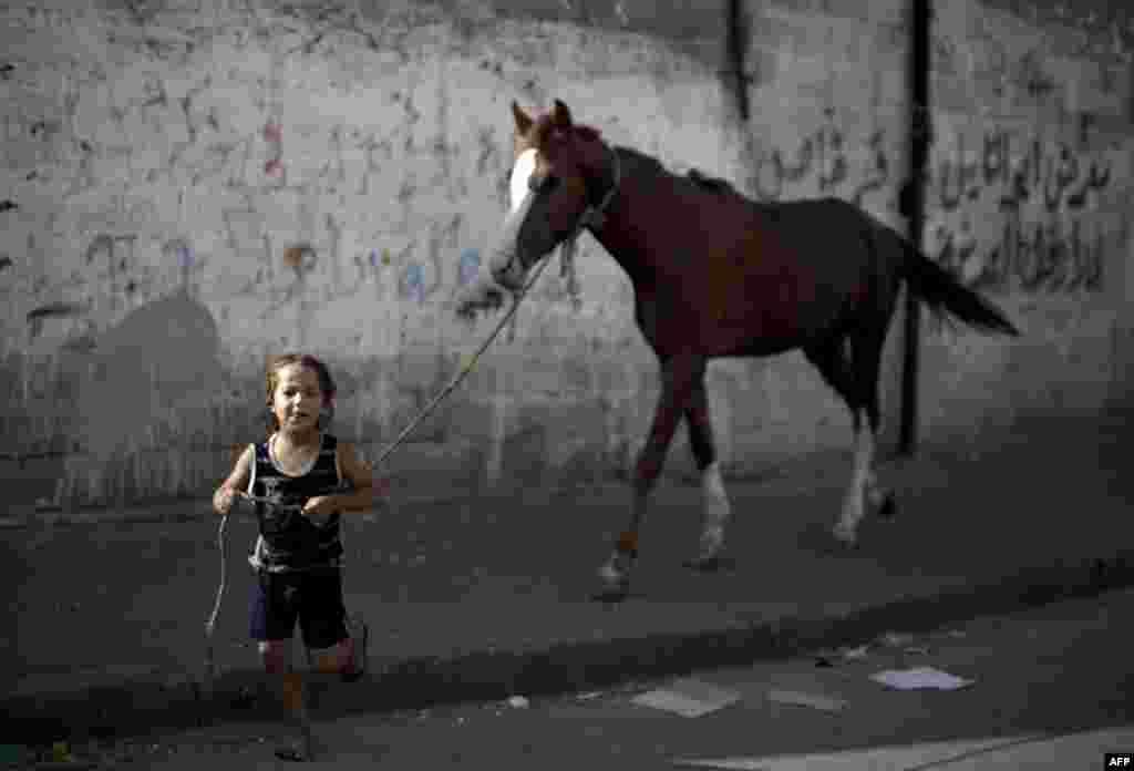 Një djalë palestinez tërheq një kalë, derisa civilët u zhvendosën nga shtëpitë e tyre për shkak të luftimeve ndërmjet ushtrisë së Izraelit dhe Hamasit, luftëtarë u kthyen për të kontrolluar shtëpitë e tyre.