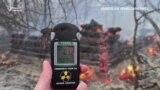 Лісова пожежа в Чорнобильській зоні триває третю добу – відео