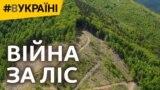 Війна за ліс – відео