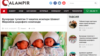 Uzbekistan - Qalampir infants