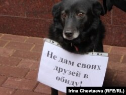 Many of the demonstrators were accompanied by their own pets at the protest.
