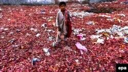 Пищевые отходы возле рынка в Пешаваре, Пакистан