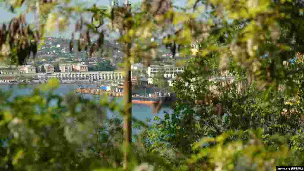 Сквозь ветки просматривается Южная бухта Севастополя