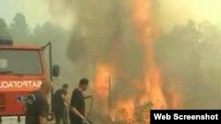 Gašenje požara na Tari, snimak iz videa RTS-a