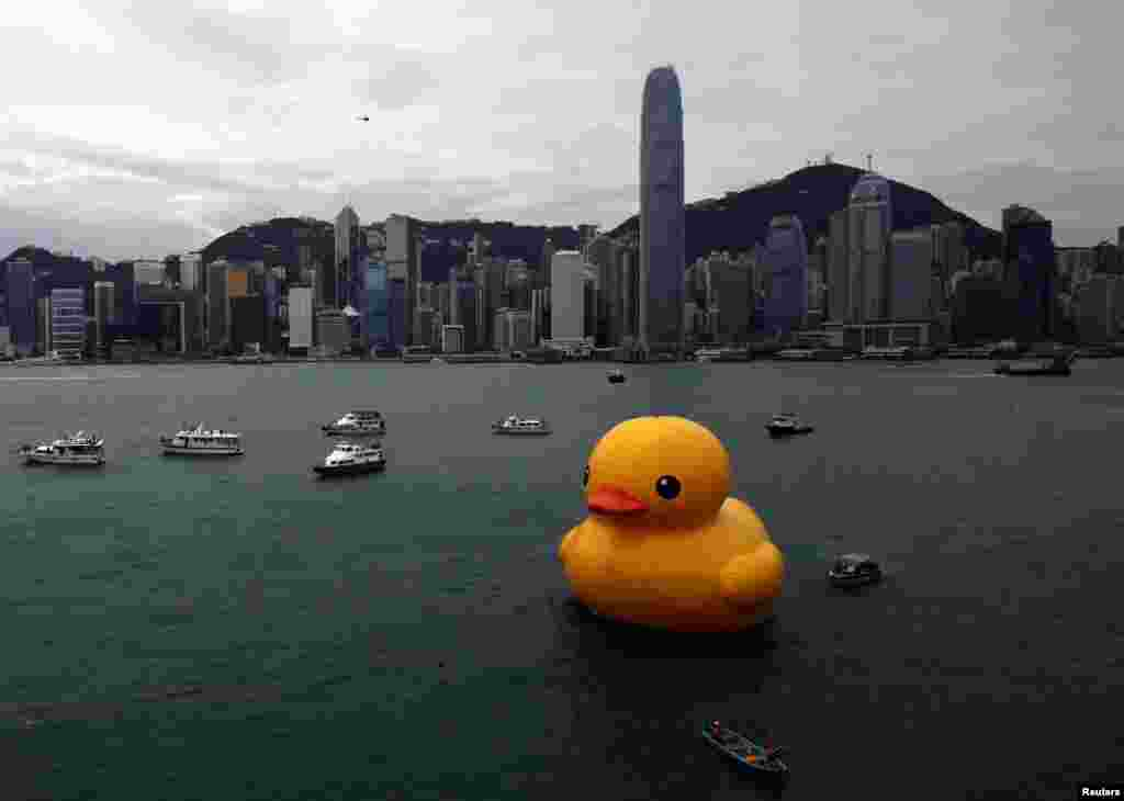 """Rubber Duck"" by Dutch conceptual artist Florentijn Hofman floats on Hong Kong's Victoria Harbour. (Reuters/Bobby Yip)"