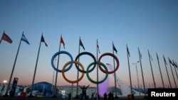A person poses under a set of Olympic rings in front of the Olympic cauldron as preparations continue at the Olympic Park for the Sochi 2014 Winter Olympics.