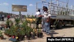 Pamje nga Bagdadi
