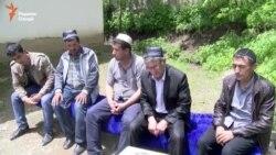 Дафни се муҳоҷири кушташудаи тоҷик