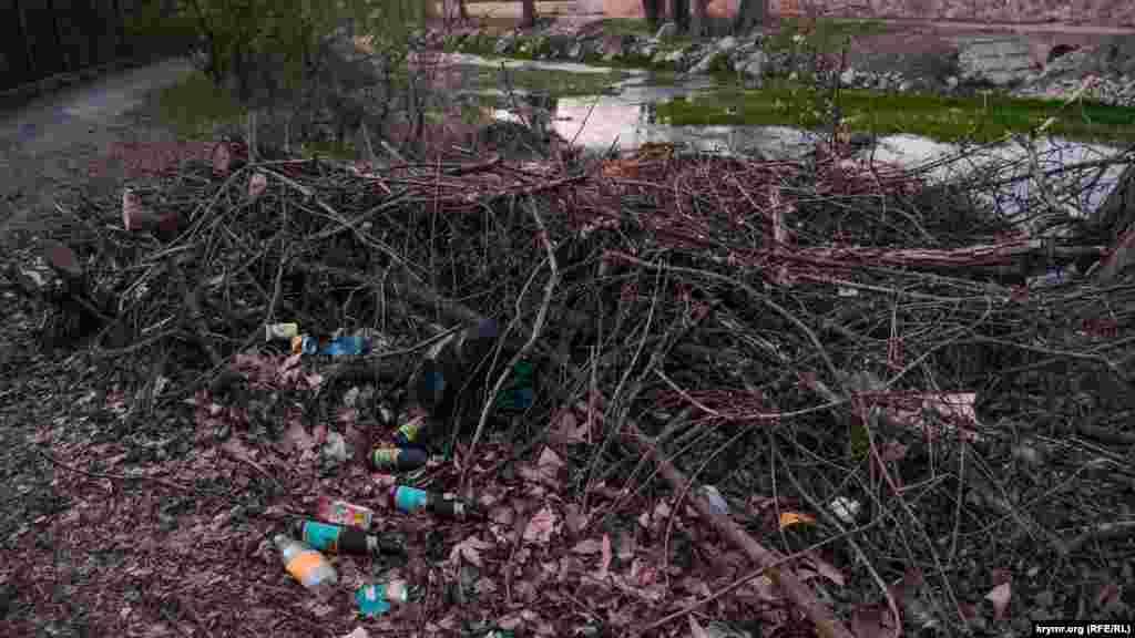 Сваленные в кучу ветки и обрезки деревьев на берегу превращаются в свалку