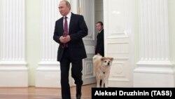 Vladimir Putin və Yume