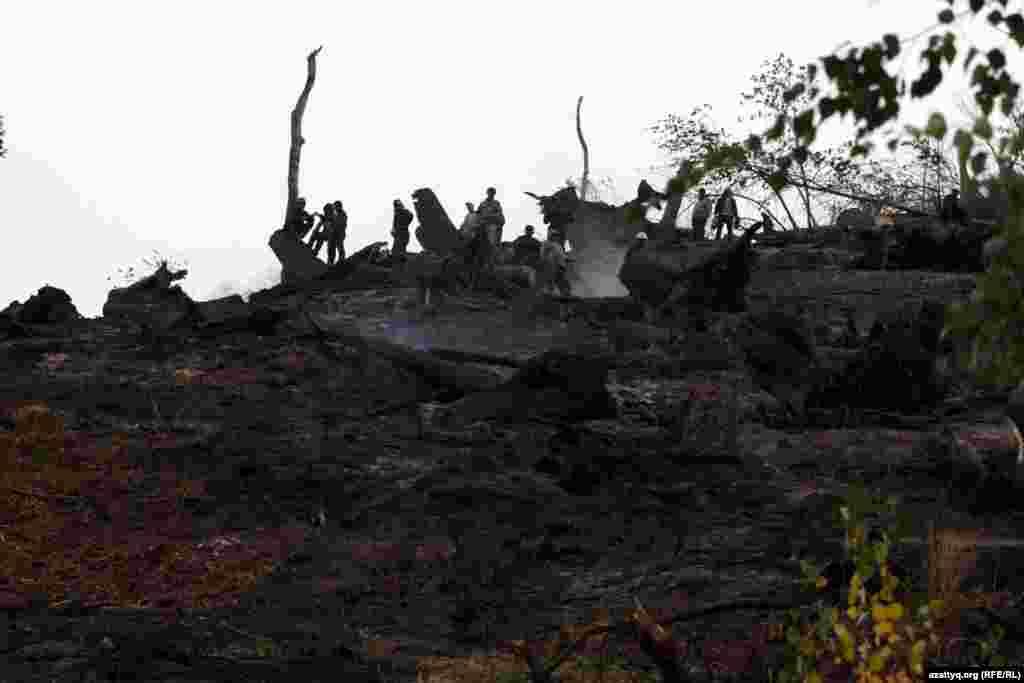Іле Алатау ұлттық қорығының өрттен кейінгі жағдайы. Іле Алатау ұлттық қорығы, 7 қыркүйек 2012 жыл.