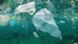 Resturi de pungi de plastic ce poluează oceanele