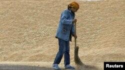 Женщина подметает зерно на току в Акмолинской области. Иллюстративное фото.