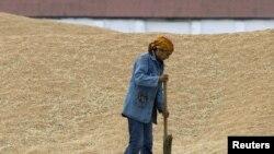 Работница тока подметает рассыпанное зерно в крестъянском хозяйстве «Алиби-Ишим» в селе Бирлик Акмолинской области. 26 августа 2010 года.