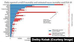 Сравнительные данные избыточной смертности и официальной статистики ковидных смертей по странам мира