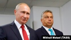 Владимир Путин и Виктор Орбан на переговорах в Будапеште, август 2017 года