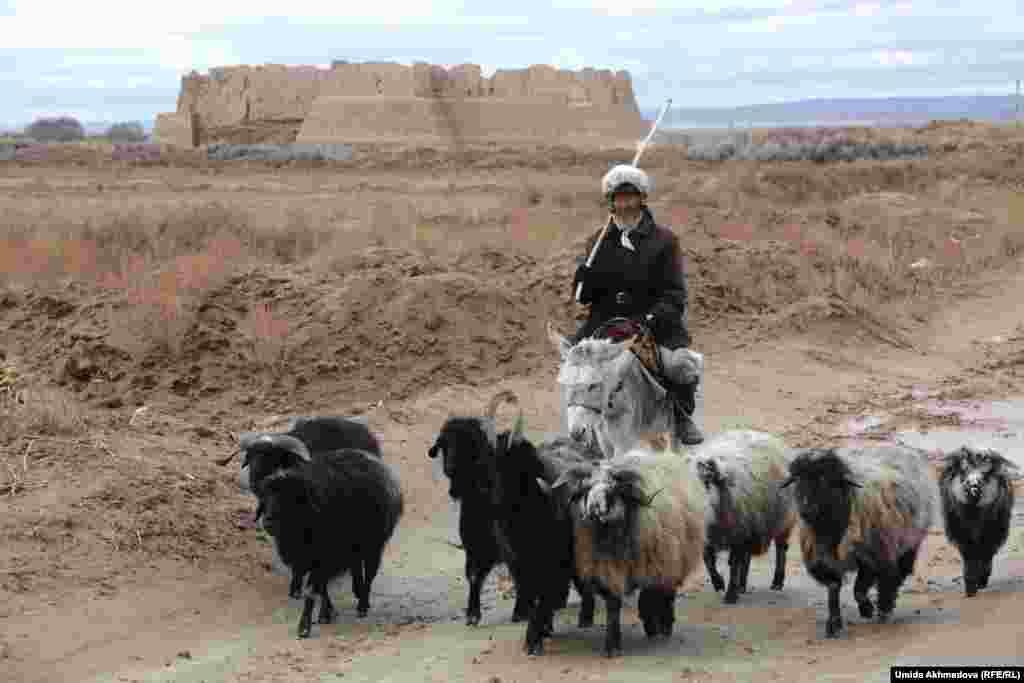 """В окрестностях Кызыл-Кала живут в основном этнические казахи, здесь есть около десятка казахских сел. Садуакас-ата, которого мы встретили рядом с селом Алгабас, сказал, что он казах """"из младшего жуза""""."""