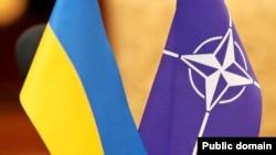 ՆԱՏՕ-ի և Ուկրաինայի դրոշները