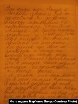Фрагмент касаційної скарги Івана Шаповала