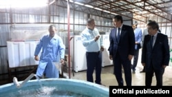 Илгиз Шаменов президентке чарбасын көрсөтүп жаткан учуру. 31-июль, 2019-жыл.