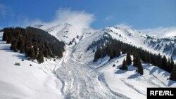 Устойчивый глубокий снежный покров в районе Кок-Жайляу зимой и до середины весны держится в основном на северных склонах Кумбеля. Однако эти же склоны лавиноопасны. На фото — след мощной лавины, сошедшей со склона Кумбеля. Лавина перекрывает и заваливает пешеходную тропу и лыжную трассу, которую прокладывают любители горных лыж, поднимающиеся туда пешком. Выжить, оказавшись на пути такой лавины, маловероятно. 22 марта 2010 года.