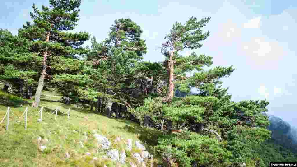 Вид на Крымский природный заповедник со стороны «Красного камня»