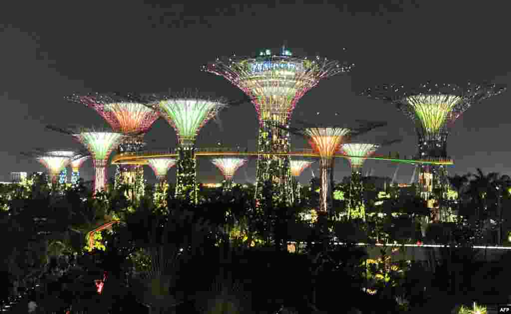 Surrounded with 12 towering giant structures from 25 to 50 meters in height, visitors to Singapore's Supertrees grove were mesmerized by an array of lights and music. (AFP/Roslan Rahman)