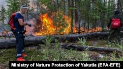 Firefighters battle a wildfire in Yakutia on August 3.