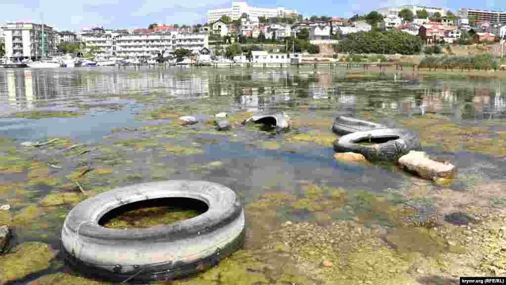 Останнім часом екологічна ситуація в Стрілецькій бухті значно погіршилася, берег і акваторія забруднені побутовими відходами, вода в бухті цвіте і має неприємний запах. За даними місцевих ЗМІ, багато будинків на схилах бухти не підключені до міської каналізаційної системи і скидають стоки прямо в море.  Як виглядає Стрілецька бухта – дивіться у фотогалереї
