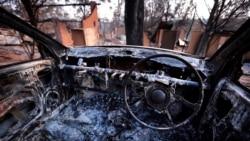 Лесные пожары в Австралии, октябрь 2013 года