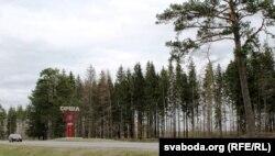 «Расстрэльны» Харкаўскі лес, архіўнае фота