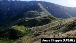 Пастухи пасут отару в горах Тушетии, Грузия.