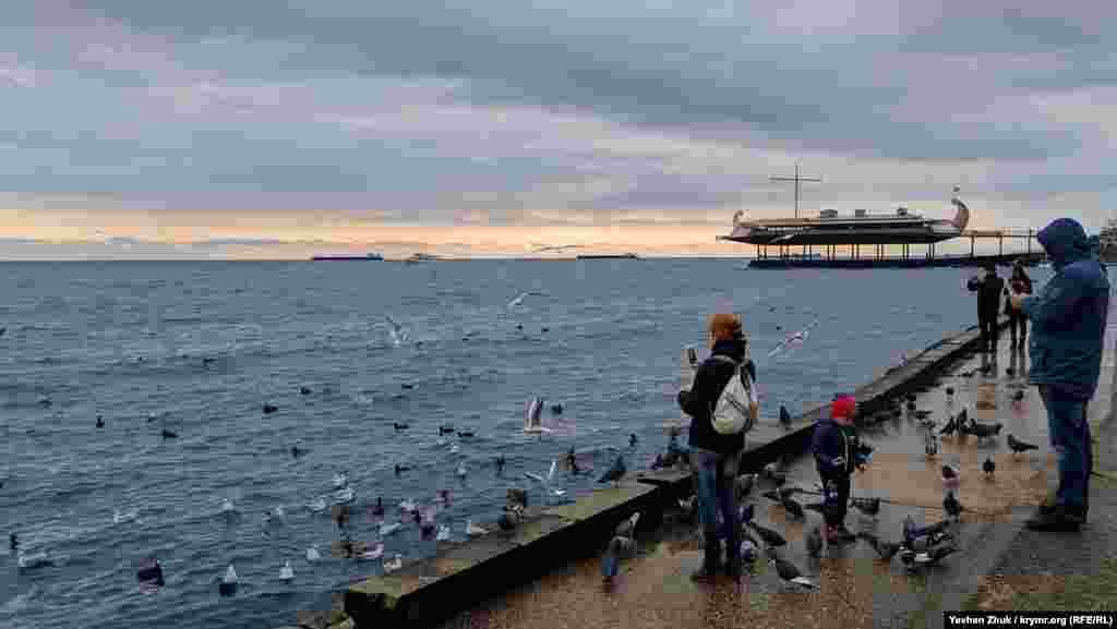 Відпочивальники годують і фотографують чайок, голубів і качок