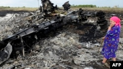 A local resident stands among the wreckage at the MH17 crash site on July 19, 2014.
