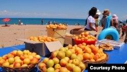 Фестиваль абрикосов на Иссык-Куле, 30 июля 2013 года.