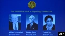 Портреты лауреатов Нобелевских премий по физиологии и медицине Уильяма Кэмпбелла, Сатоси Омуре и Ту Юю