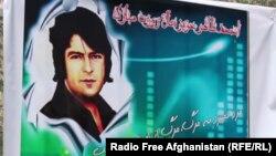 افغان هنرمند احمدظاهر