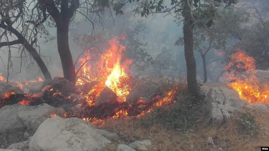 آتشسوزی در دشتستان و خائیز تنگستان تا امروز باعث سوختن ۶۲۰ هکتار از مراتع شده است