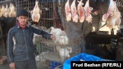 Farhad, a butcher's assistant in Kabul