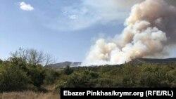 Пожар в лесу возле Старого Крыма. Архивное фото