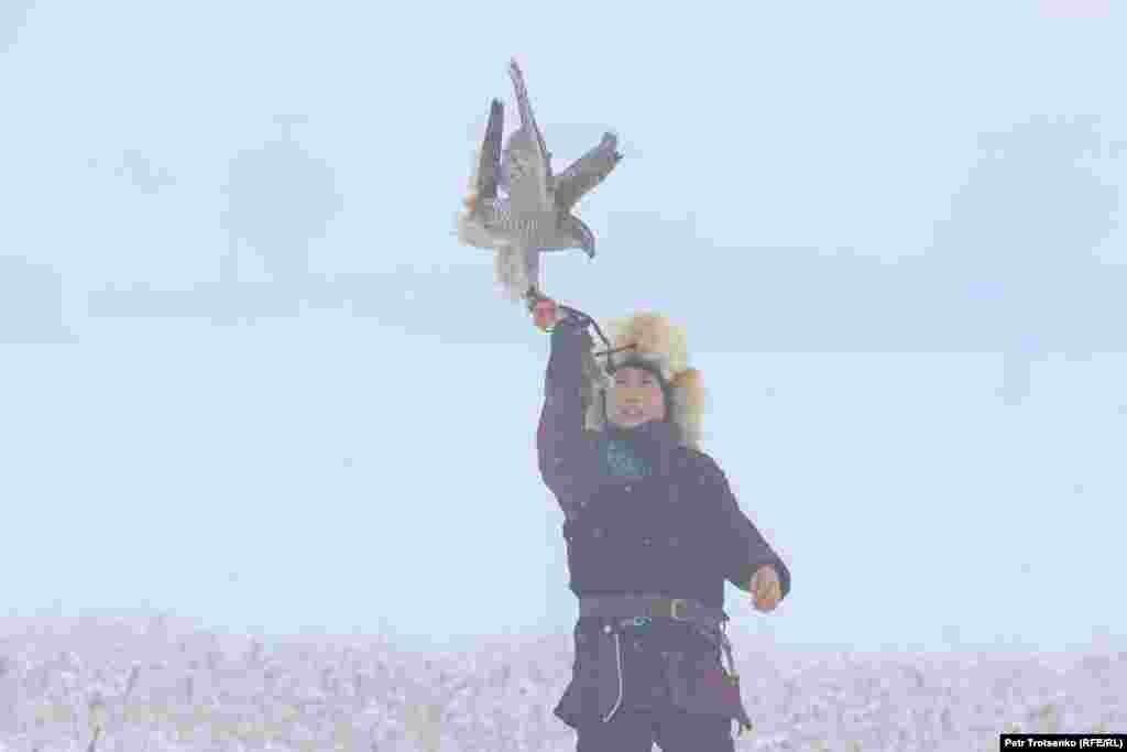 Сокіл сідає на руку юному мисливцеві. Під час змагань у горах почався сильний туман, але це не заважало ловчим птахам виконувати завдання турніру