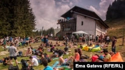 Фестивалът на боровинките се провежда всяка година край Амбарица
