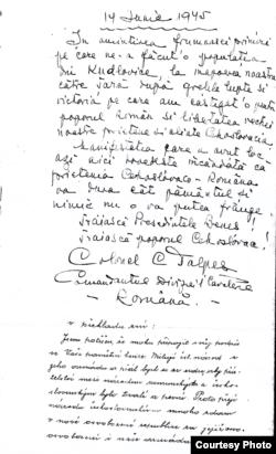 Însemnările colonelului C. Talpeș, comandantul Diviziei 1 Cavalerie română