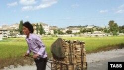 احتمال می رود کره شمالی دست کم ظرف يک سال آينده با بحران کمبود مواد غذايی رو به رو شود.