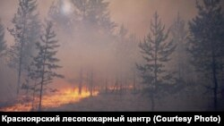 A forest fire in Russia's Krasnoyarsk region.