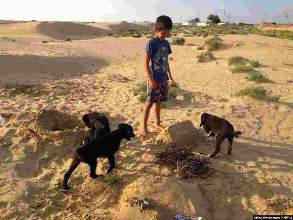 Мальчик играет с щенятами на окраине села Акбасты.