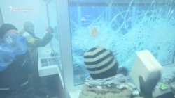 Ukrainian Protesters Smash Up Russian Bank Branch In Kyiv