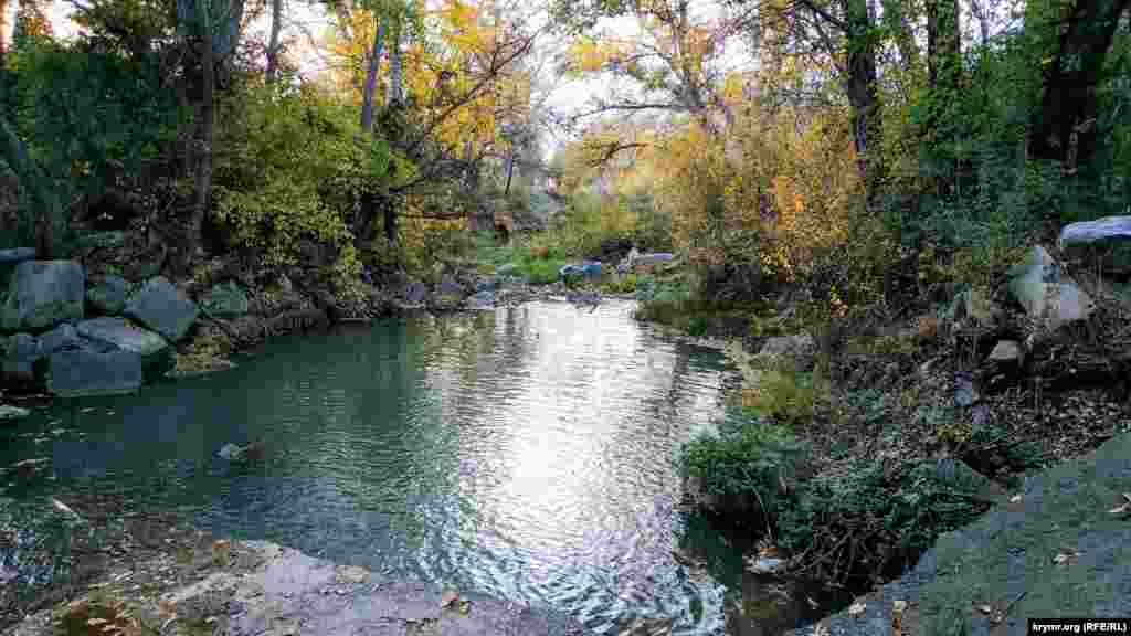 Река Альма, которая впадает в водохранилище, возле села Новопавловка. В этом месте уровень воды очень низкий
